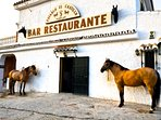 Horse riding and Andalucian horse shows here at the 'Stables' restaurant - great cultural experience