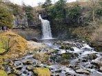 Thornton Force on the Ingleton Waterfalls walk