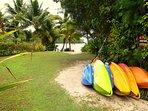 6 kayaks to use