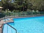 pool steps and railings