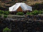 the beduin tent