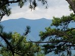 IOV view off the back deck, it really is this beautiful. Mt. LeConte is so close, you can touch it.