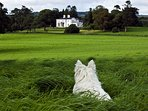 Coolclogher House views over the parkland.