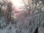 Photo taken looking out front of house in the winter at the sunrise.