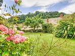 View from Yew Tree Cottage garden