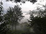 View from villa - misty