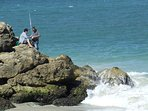 Fishing off Quinns Beach Rocks