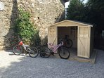 Selection of Adult & Children's bikes available for hire