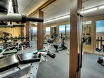 Amazing fully equipped Gym