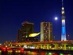 tokyo  metropolitan expressway night view tour 60 minutes by car