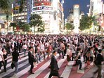 this is shibuya, you can not imagine only 15 mins form our house!