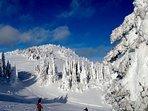 New snow on Mt Tod at Sun Peaks