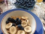 Fresh organic blueberries are served with organic oats and bannanas