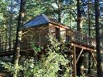 Cabane écureuil réalisée en cèdre de la forêt.