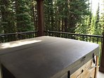 Private Hot Tub on the Spacious Deck