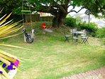 Swings under the Oak Tree, in a popular corner of the garden. ( I wonder why?)