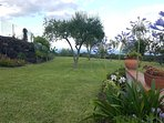 Outside, surrounded by a large area consisting of green meadows, olive groves, vineyards and fruit t