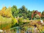 The natural swimming pool - swim in fresh water!