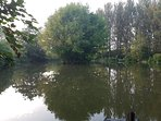 Our 1 acre carp & coarse fishing lake is free for guests to use throughout the year.