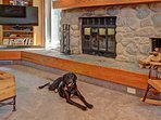 Dog Friendly Condo - This is a dog friendly condo.  Condo is cleaned thoroughly after each pet stay.