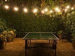 Outdoor Ping Pong Table available to wheel out of garage to play outside or play in the garage