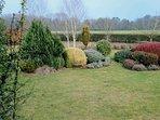 A lush, expansive garden