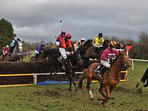 Belclare 'Point-to-Point' Racing
