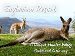 Eagleview Resort - A Unique Hunter Valley Bushland Getaway filled with native wildlife