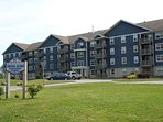 Briar Rose in Dartmouth (Cole Harbour area)