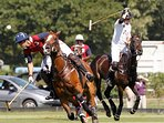 Polo Club Chantilly