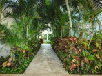The Elements lush, tropical walkways