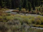 Snake River - The babbling Snake River is just steps from your back door!