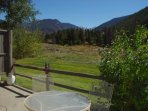 Summer View from Patio - Perfect location for a winter or summer getaway!