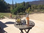 Looking over our gardens and olive trees towards the Luberon hills
