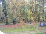 Autumn colours from the many ancient and specimen trees in the grounds