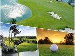 Pinellas County has 43 golf courses