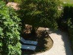 View into garden.