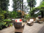 Redwood Rendezvous, Charming Cabin near Guerneville