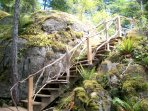 Stairs to Cabin with Driftwood Railing