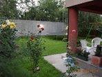 back yard / garden