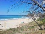 Alex beach