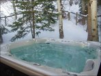 Beautiful Private Hot Tub out back