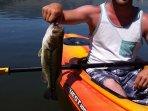 Bass fishing on the lake