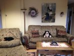 Bear themed living area is rustic and comfy
