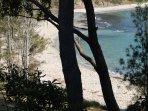 Beautiful Shark Net Beach just a 5 min walk.