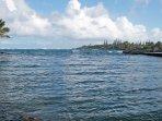 Enjoy the natural Hawaiian scenery in this Kapoho Beach Lots vacation rental home!