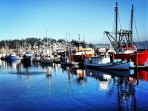 Watch the famous Newport fishing fleet head in and out of port, then buy their catch off the boats!