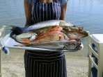 Fresh fish available in local restaurants