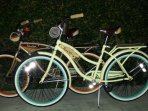We offer common bikes