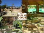 This bioparc at Doué-la-fontaine is a great day out for all the family (45 min drive approx).